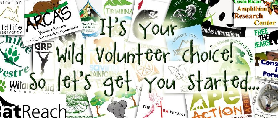 Wild Volunteering