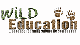Wild Education